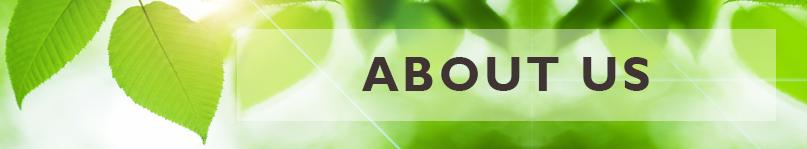 About Us : Sansar Green Technologies